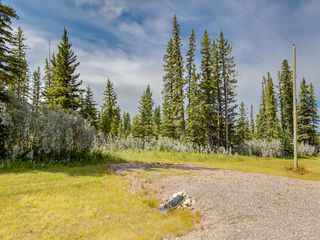 Photo 5: 7 34364 RANGE ROAD 42: Rural Mountain View County Land for sale : MLS®# A1017817