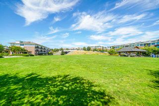 "Photo 20: 205 220 SALTER Street in New Westminster: Queensborough Condo for sale in ""GLASSHOUSE LOFTS"" : MLS®# R2412072"
