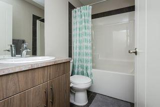 Photo 33: 4420 6 Street in Edmonton: Zone 30 House Half Duplex for sale : MLS®# E4197021