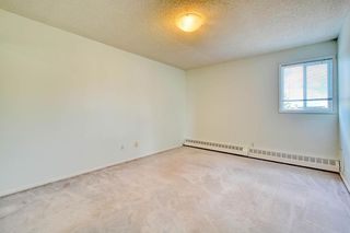 Photo 26: 11 6203 BOWNESS Road NW in Calgary: Bowness Apartment for sale : MLS®# C4300246