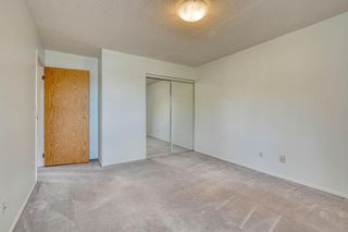 Photo 27: 11 6203 BOWNESS Road NW in Calgary: Bowness Apartment for sale : MLS®# C4300246