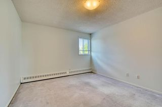 Photo 29: 11 6203 BOWNESS Road NW in Calgary: Bowness Apartment for sale : MLS®# C4300246