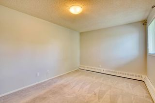 Photo 20: 11 6203 BOWNESS Road NW in Calgary: Bowness Apartment for sale : MLS®# C4300246
