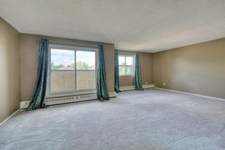 Photo 10: 11 6203 BOWNESS Road NW in Calgary: Bowness Apartment for sale : MLS®# C4300246