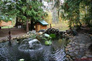 Photo 9: 1240 Morgan Drive: Scotch Creek Residential Detached for sale (North Shore, Shuswap Lake)  : MLS®# 9180045