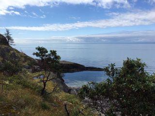 Photo 3: WEST TRAIL ISLAND in Halfmoon Bay: Sechelt District House for sale (Sunshine Coast)  : MLS®# R2498445