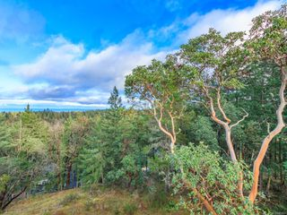 Photo 40: 7090 Aulds Rd in : Na Upper Lantzville House for sale (Nanaimo)  : MLS®# 861691