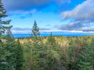 Photo 38: 7090 Aulds Rd in : Na Upper Lantzville House for sale (Nanaimo)  : MLS®# 861691