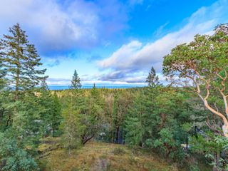 Photo 39: 7090 Aulds Rd in : Na Upper Lantzville House for sale (Nanaimo)  : MLS®# 861691