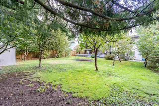 Photo 20: 14927 92A Avenue in Surrey: Fleetwood Tynehead House for sale : MLS®# R2412006