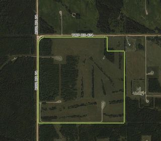 Photo 9: Twp. 474 & Rng. Rd. 74: Rural Brazeau County Rural Land/Vacant Lot for sale : MLS®# E4189527
