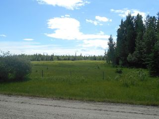 Photo 14: Twp. 474 & Rng. Rd. 74: Rural Brazeau County Rural Land/Vacant Lot for sale : MLS®# E4189527