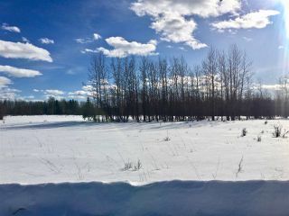 Photo 5: Twp. 474 & Rng. Rd. 74: Rural Brazeau County Rural Land/Vacant Lot for sale : MLS®# E4189527