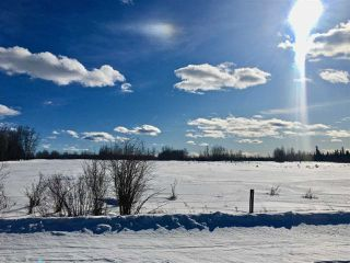 Photo 2: Twp. 474 & Rng. Rd. 74: Rural Brazeau County Rural Land/Vacant Lot for sale : MLS®# E4189527