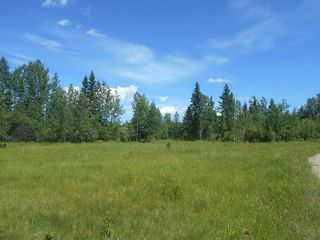 Photo 15: Twp. 474 & Rng. Rd. 74: Rural Brazeau County Rural Land/Vacant Lot for sale : MLS®# E4189527