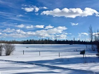 Photo 3: Twp. 474 & Rng. Rd. 74: Rural Brazeau County Rural Land/Vacant Lot for sale : MLS®# E4189527