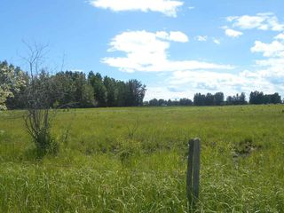 Photo 13: Twp. 474 & Rng. Rd. 74: Rural Brazeau County Rural Land/Vacant Lot for sale : MLS®# E4189527