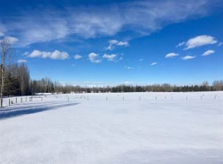 Photo 7: Twp. 474 & Rng. Rd. 74: Rural Brazeau County Rural Land/Vacant Lot for sale : MLS®# E4189527