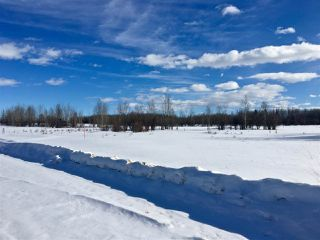 Photo 4: Twp. 474 & Rng. Rd. 74: Rural Brazeau County Rural Land/Vacant Lot for sale : MLS®# E4189527