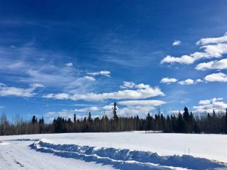 Photo 8: Twp. 474 & Rng. Rd. 74: Rural Brazeau County Rural Land/Vacant Lot for sale : MLS®# E4189527