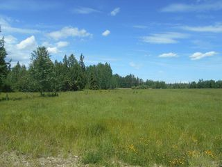 Photo 10: Twp. 474 & Rng. Rd. 74: Rural Brazeau County Rural Land/Vacant Lot for sale : MLS®# E4189527