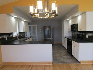 Photo 14: 1186 TROUT LAKE Road in New Albany: 400-Annapolis County Residential for sale (Annapolis Valley)  : MLS®# 202007929