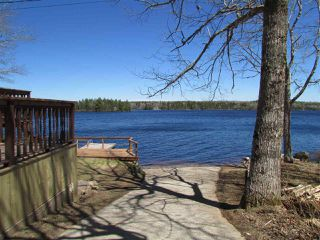 Photo 9: 1186 TROUT LAKE Road in New Albany: 400-Annapolis County Residential for sale (Annapolis Valley)  : MLS®# 202007929