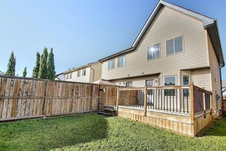 Photo 45: 240 ELGIN MEADOWS Gardens SE in Calgary: McKenzie Towne Semi Detached for sale : MLS®# A1014600