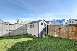 Photo 46: 240 ELGIN MEADOWS Gardens SE in Calgary: McKenzie Towne Semi Detached for sale : MLS®# A1014600