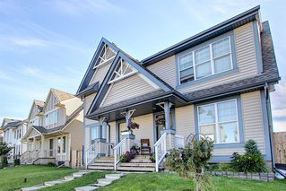 Photo 48: 240 ELGIN MEADOWS Gardens SE in Calgary: McKenzie Towne Semi Detached for sale : MLS®# A1014600