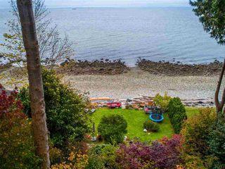 Photo 5: 3269 BEACH Avenue: Roberts Creek House for sale (Sunshine Coast)  : MLS®# R2511838