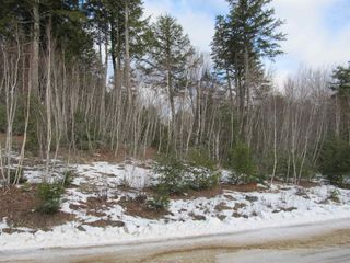Photo 6: Acreage Cornwall Road in Blockhouse: 405-Lunenburg County Vacant Land for sale (South Shore)  : MLS®# 202100150