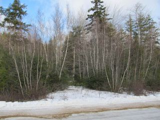 Photo 5: Acreage Cornwall Road in Blockhouse: 405-Lunenburg County Vacant Land for sale (South Shore)  : MLS®# 202100150
