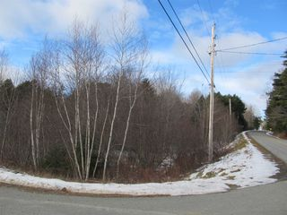 Photo 4: Acreage Cornwall Road in Blockhouse: 405-Lunenburg County Vacant Land for sale (South Shore)  : MLS®# 202100150