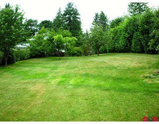 Photo 9: 32437 EGGLESTONE AV in Mission: House for sale : MLS®# F2821390