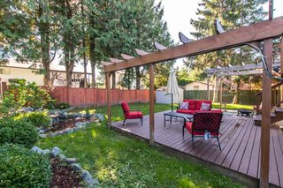 Photo 19: 26456 30A Avenue in Langley: Aldergrove Langley House for sale : MLS®# R2413273