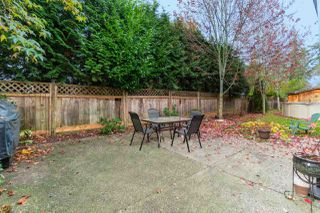 "Photo 19: 23709 115 Avenue in Maple Ridge: Cottonwood MR House for sale in ""CREEKSIDE"" : MLS®# R2418586"