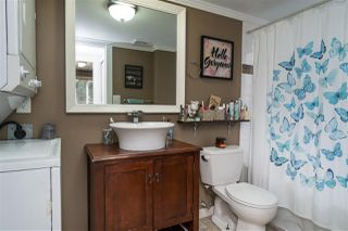 "Photo 17: 23709 115 Avenue in Maple Ridge: Cottonwood MR House for sale in ""CREEKSIDE"" : MLS®# R2418586"