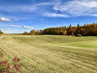Photo 29: 50277 RGE RD 233: Rural Leduc County House for sale : MLS®# E4187017
