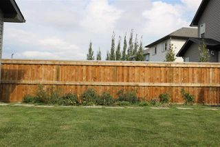 Photo 25: 7227 SOUTH TERWILLEGAR Drive in Edmonton: Zone 14 House for sale : MLS®# E4195907