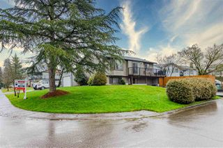 Photo 2: 9572 212A Street in Langley: Walnut Grove House for sale : MLS®# R2457075