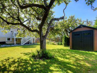 Photo 22: 1566 Yale St in Oak Bay: OB North Oak Bay Single Family Detached for sale : MLS®# 843936