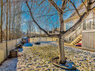 Photo 49: 91 Cambridge Glen Drive: Strathmore Detached for sale : MLS®# A1055616