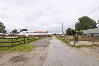 Photo 16: 2990 57B STREET in Delta: Agriculture for sale : MLS®# C8023503