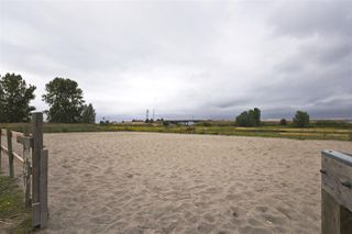 Photo 13: 2990 57B STREET in Delta: Agriculture for sale : MLS®# C8023503
