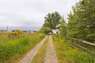 Photo 7: 2990 57B STREET in Delta: Agriculture for sale : MLS®# C8023503