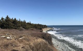 Main Photo: Acreage Jeddore Cape in Lower West Jeddore: 35-Halifax County East Vacant Land for sale (Halifax-Dartmouth)  : MLS®# 202004961