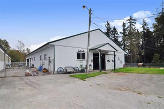 Photo 33: 4898 248 Street in Langley: Salmon River House for sale : MLS®# R2507478