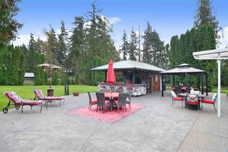 Photo 6: 4898 248 Street in Langley: Salmon River House for sale : MLS®# R2507478