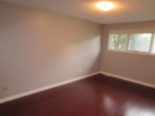 Photo 16: 91 SHULTZ Crescent: Rural Sturgeon County House for sale : MLS®# E4175419